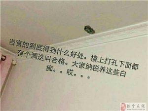 湖南省,邵阳市,澳门新葡京官网县,山水名都问题那么多,质量那么差,怎么验收合格?