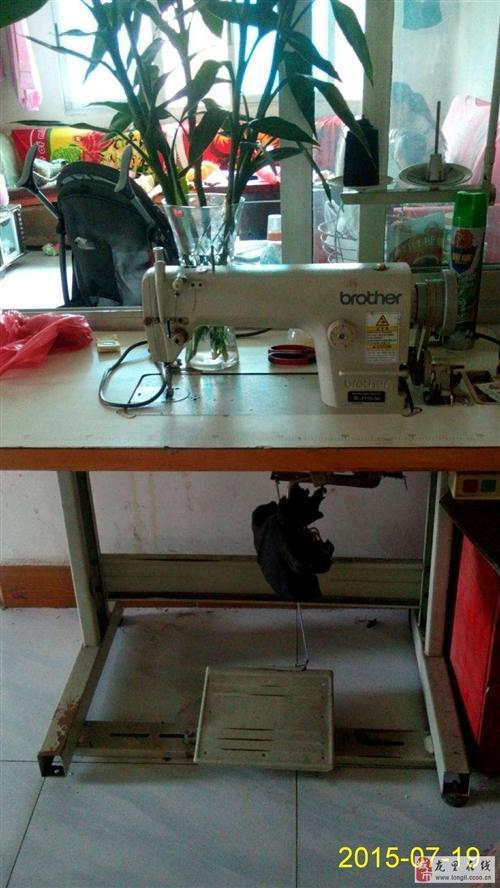工业平缝机