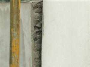 半山豪苑一房子的墙成这样还不修??