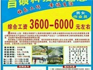 上海正航A�派遣招募