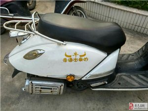 新京葡棋牌某地见到很可爱的摩托车。