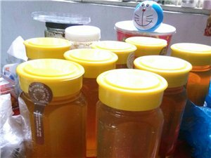 平陽蓋土蜂蜜