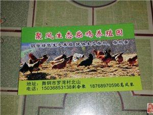 """舞钢 """"聚凤柴鸡生态养殖园""""舌尖上的鸡肉,你 值得拥有。"""