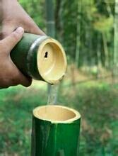 出售竹子里长出来的原生态酒