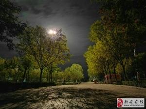世纪广场夜景