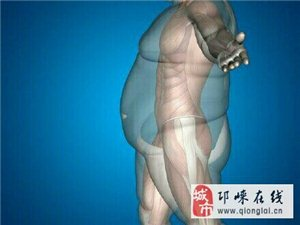 光做有氧运动,越做越胖