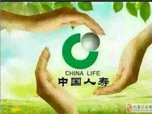 中國人壽財險