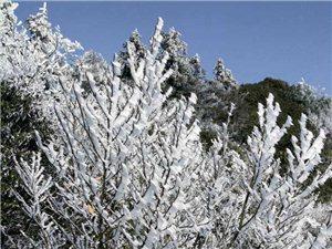 神坡山雪景
