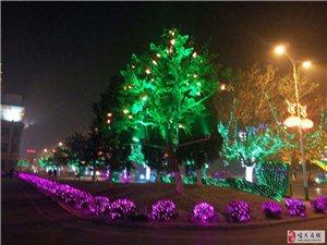 火树银花利州城喜迎春节