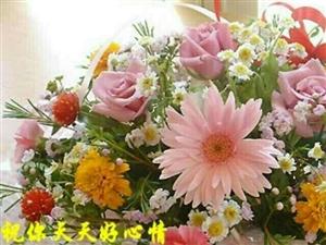 袁团先给:所有的好朋友拜年了,过年好,过年好!