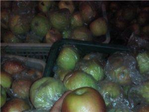 自家种苹果大量出售