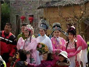 梨花节--长虹高田坑