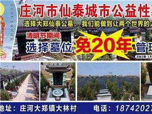 公墓清明节公益活动
