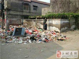 老城胜利小学北垃圾成堆