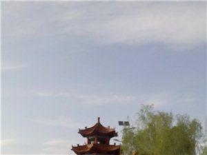 《回望故乡》   文/曹云平