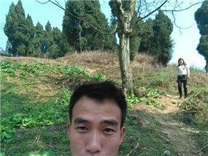 【帅男秀场】王洪亮