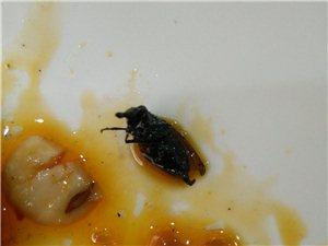 彬县公刘街鸭掌门卫生极差,吃出苍蝇,我再也不去了……