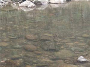 城口覃家河河水污染无人问津