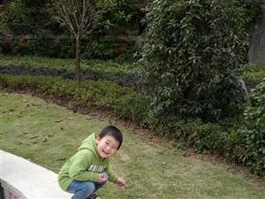 【萌宝秀场】陶子瑞