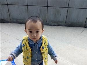 【萌宝秀场】刘鑫锐