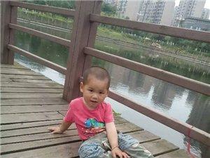 【萌宝秀场】刘明轩