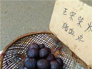 澳门威尼斯人赌城开户县自己土特产柴火熏土特产猪血丸子