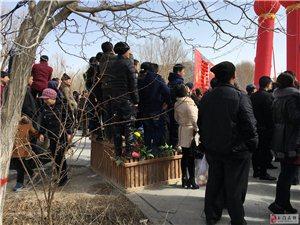 市民看社火践踏破坏公共设施