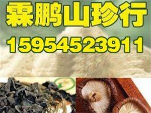 招遠木耳香菇野生菌禮盒批發零售