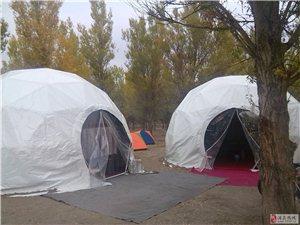 金塔胡杨林帐篷露营住宿