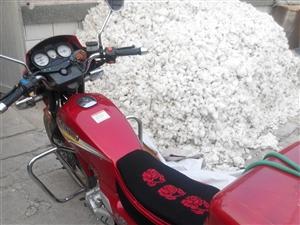 豪爵摩托车