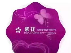紫花國際美容瘦身連鎖機構