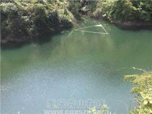 石堤大溪鄉打撈寨生態野生魚出售