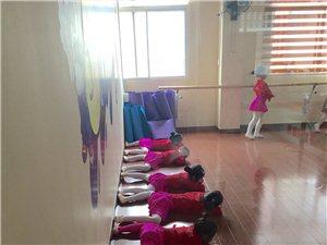 5-SHOW舞蹈周末課堂