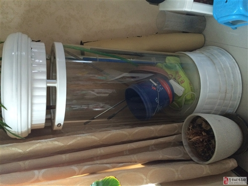 立柱型魚缸出售