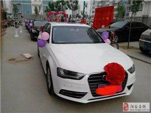 陽谷小魯婚慶服務中心