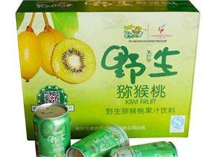 纯野生猕猴桃饮料,百分之40果汁成分