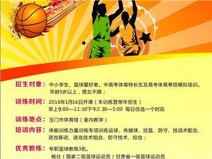 逐梦青少年篮球训练营