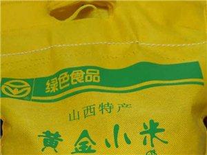 纯绿色黄金小米