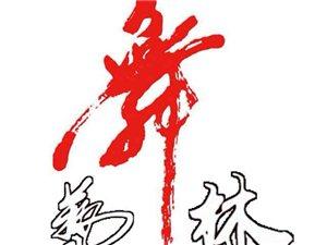 高陽藝林舞蹈藝校春季招生開始了