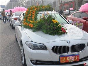 王皓婚車俱樂部