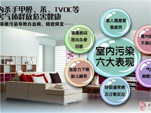 室内装修污染检测治理专家