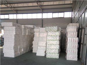 衛生紙零售,批發