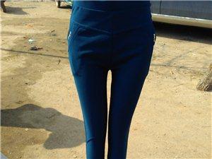 專業批發,打的褲,時裝褲,牛仔褲,外貿褲