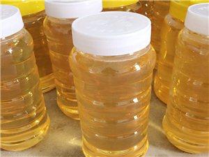 纯正蜂蜜蜂王浆花粉