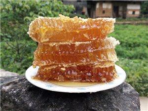 对不起!!我知道你一直都想喝上真正的土蜂蜜。可我们现在才来!!!