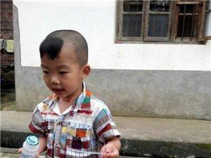 遂川�h一男孩患重型地中海�血,期待�坌慕恿�
