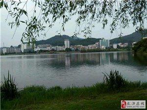 彭��Y明湖�S景