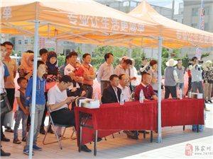 张家川县首届汽车文化节开幕  野马汽车强力赞助