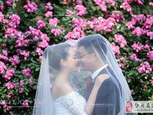 夏季婚纱照:蔷薇花玫瑰花开的季节