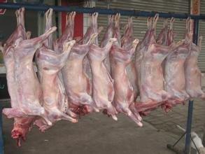 临西聚福楼倾情推出特色美食――曹县烤全羊